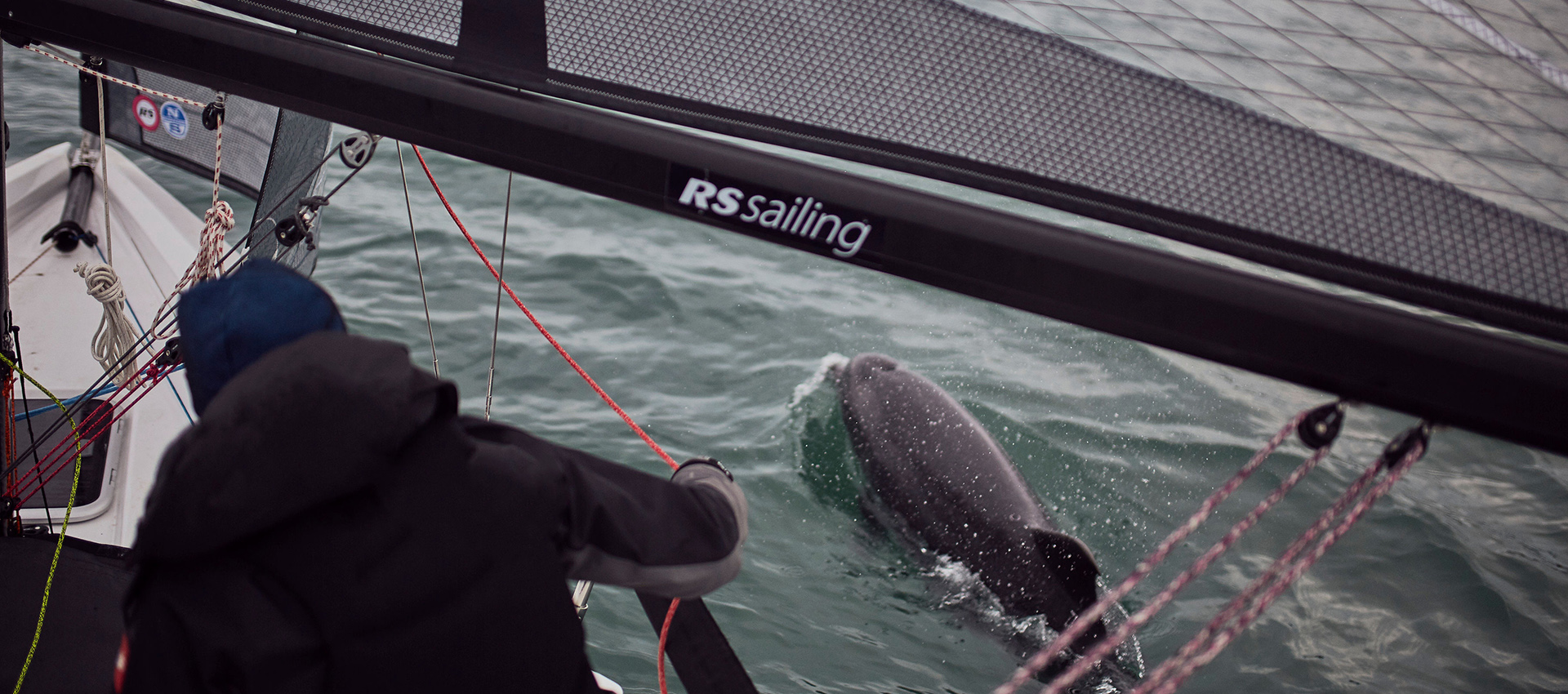 RS Sustainability Dolphin